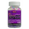 EPG ArimePCT Stage, 60 capsules